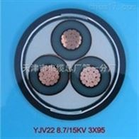 江苏计算机电缆DJYPVP22厂家直销