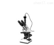CWS100T三目生物显微镜