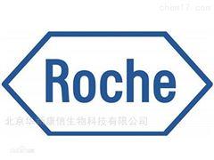 北京华新Roche 抗体一级代理