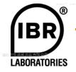 IBR 连接模块