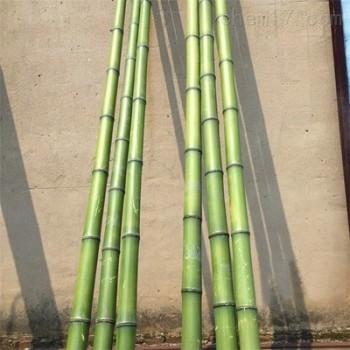 供应6CM粗竹竿 天津竹竿 搭葡萄架用竹竿
