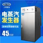 LDR0.063-0.7工厂销售蒸发量63kg功率48kw电蒸汽锅炉