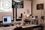 植物生理生态荧光动态显微镜