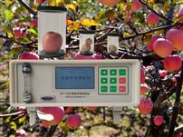 SY-1022果蔬呼吸测定仪