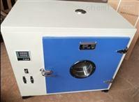 101 系列电热鼓风干燥箱