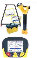 Vivax DM埋地管道防腐層檢測系統