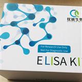 QCR0709大鼠立方蛋白(Cubn)ELISA试剂盒