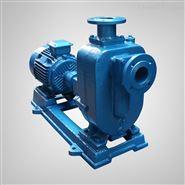 高自吸污水泵