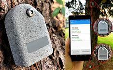 植物生理树木稳定安全性测试仪