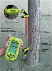 植物生理立木品质测量仪