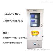 sGas2000-CGC+O2在線煤氣熱值分析儀