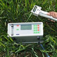 泽农ZN-3108C植物蒸腾速率测量仪
