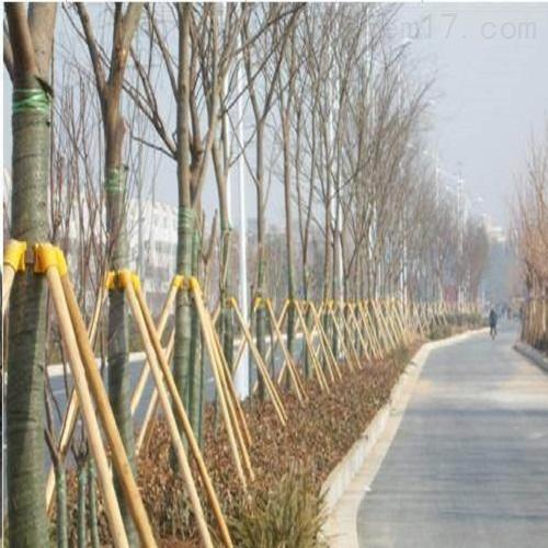 园林树木防寒用支撑杆 树木支撑杉木杆