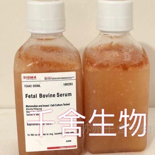 SIGMA胎牛血清(货号:F2442)