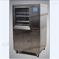 SHHZQJ-100微机超声波清洗剂
