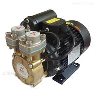 CP500S系列高温冷却循环泵