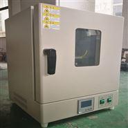 立式鼓风干燥箱DHG-9030B