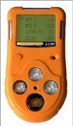 LB-DQD便携式复合气体检测仪