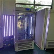 智能人工气候恒温培养箱(RGL-300L)