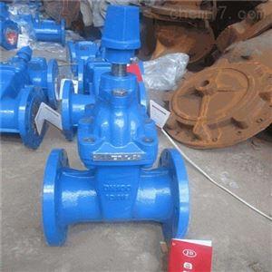 Z741T-10液动铸铁明杆楔式闸阀