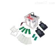 JY-SCZ4+垂直电泳槽