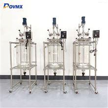 DGX20L-20L多功能过滤反应釜