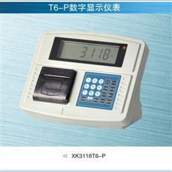 XK3118T6-P寧波柯力稱重顯示模擬儀表廠家