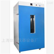 250℃电热恒温鼓风干燥箱立式9920A