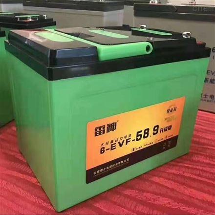 理士雷神6-EVF62.9 电动三轮车用铅酸蓄电池