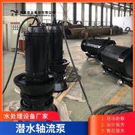 十堰泵房改造用1200QZB潜水轴流泵机泵一体