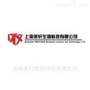 A2780/Taxol-LUC 荧光素酶标记