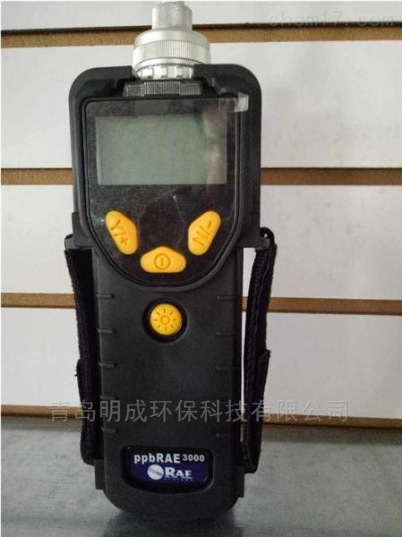 美国华瑞PGM-7340 ppbRAE3000VOC气体分析仪