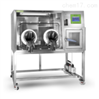 厌氧培养箱系统(厌氧工作站)