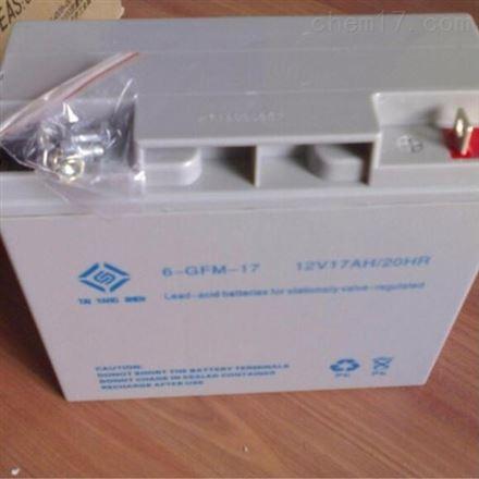 太阳神6-GFM-17 12v17ah UPS电源专用蓄电池