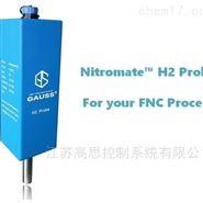 氢探头、氢分析仪