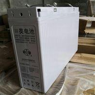 12V150AH双登蓄电池6-FMX-150C品牌报价