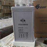 2V300AH双登2V蓄电池GFM-300区域代理销售