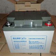 12V38AH理士蓄电池DJM1238S报价