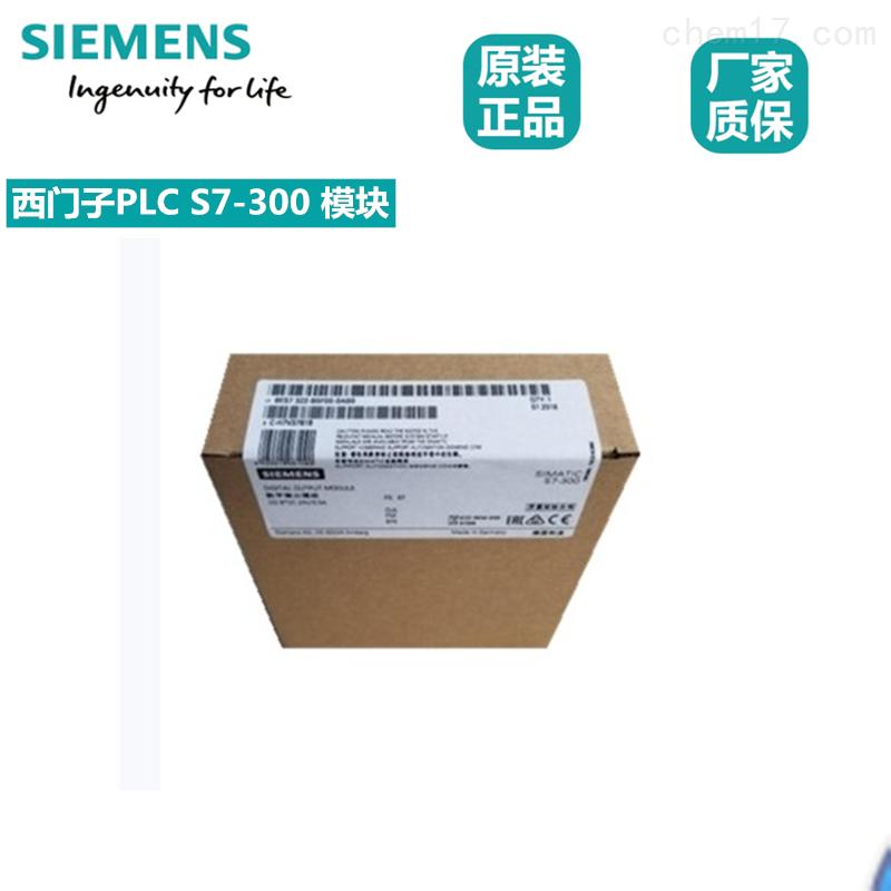 西门子电源模块代理商6EP1331-2BA00
