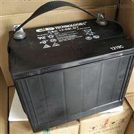12V65AH大力神通信蓄电池C D12-65 LBT