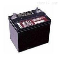 12V40AH大力神蓄电池MPS12-40批发零售价格