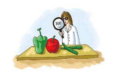 吃瓜季将临 检测技术助力瓜果农残检测
