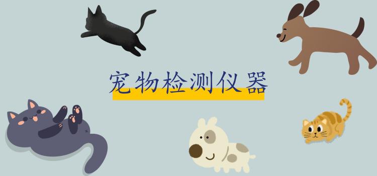 宠物医院发展火热 这些动物专用仪器你知道吗?