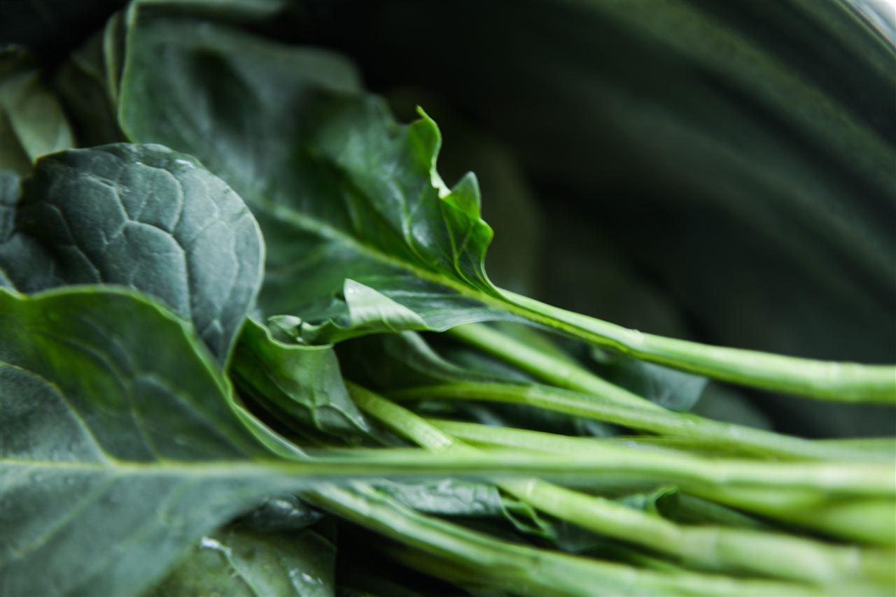 严于国际食品法典 我国新农残限量标准发布