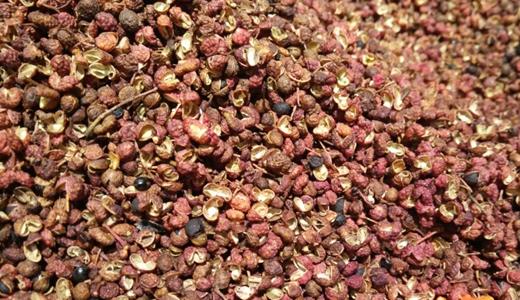 干燥设备发展让植物调味料产业迎来工艺升级
