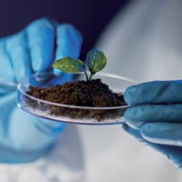 珀金埃尔默土壤污染物检测全流程解决方案