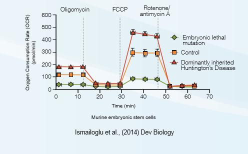 XF细胞线粒体压力测试