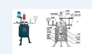 不锈钢反应釜(KCFD系列高压反应釜)