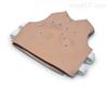 1岁儿童穿戴式心肺听诊模型