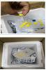 AGC-003上海起发抗体清关服务